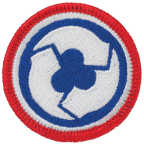 311th Corps Support Command (311th COSCOM)