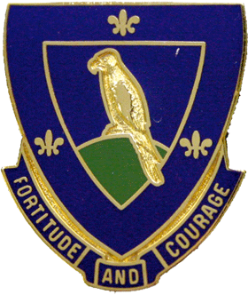 1st Battalion, 314th Regiment (Infantry)