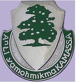 2nd Battalion, 348th Regiment