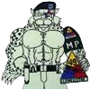 149th Military Police Company, 49th Armored Division