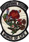 63rd Medical Detachment, 421st Medical Company (AA)
