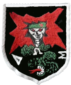 Detachment B-50 (Project Omega), Company E (Provisional) Detachment C-5 (Special Operations)