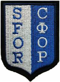 Task Force Eagle