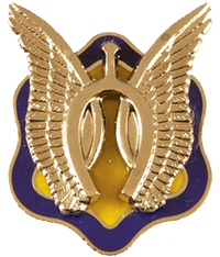 1st Squadron, 17th Cavalry Regiment