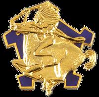 2nd Squadron, 9th Cavalry Regiment