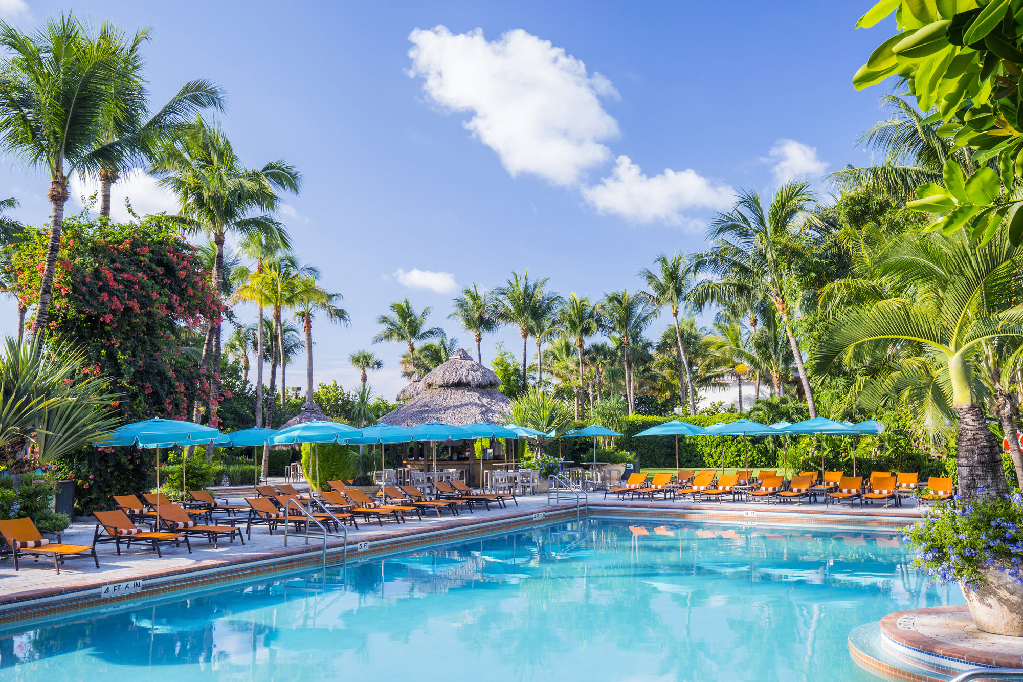 Discount Coupon for The Palms Hotel & Spa in Miami Beach
