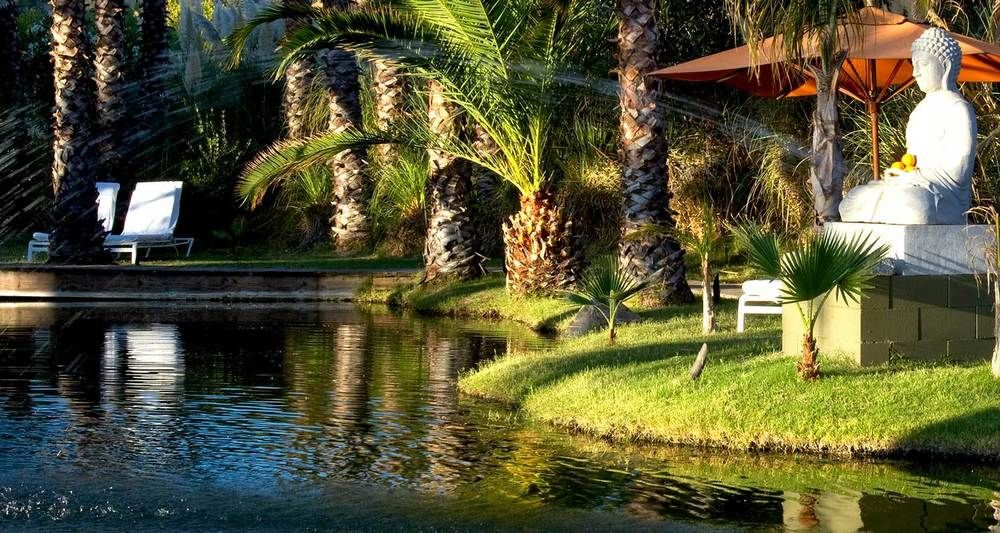 Discount Coupon For Indian Springs Resort In Calistoga