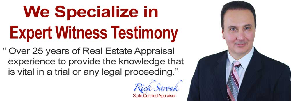 Expert Witness-Appraiser