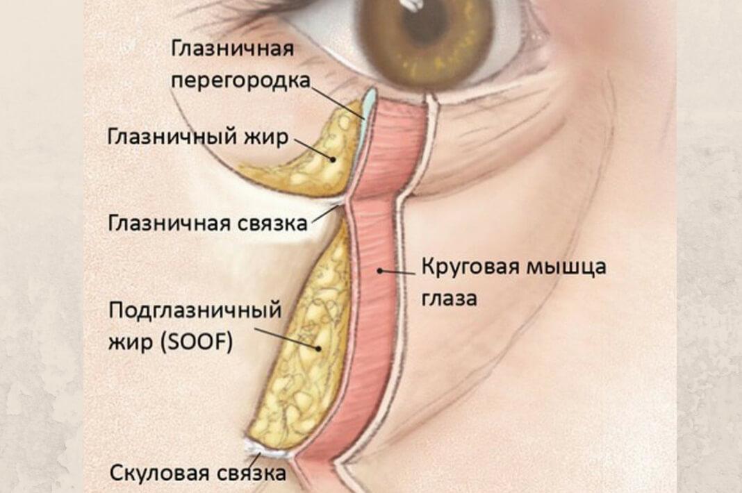 Носослезная борозда коррекция филлерами. Фото до и после, цены, отзывы, осложнения
