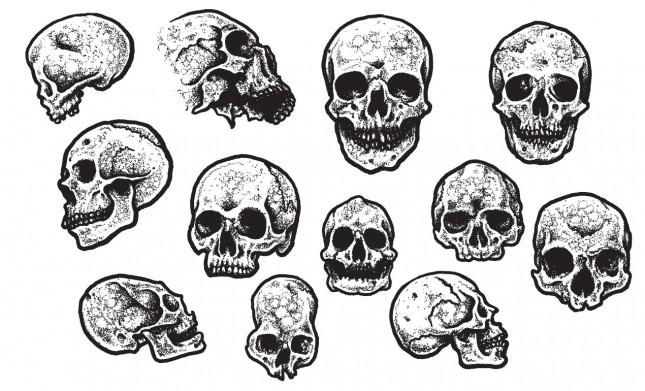 Jeff Finley's Skull Vector Pack for Go Media