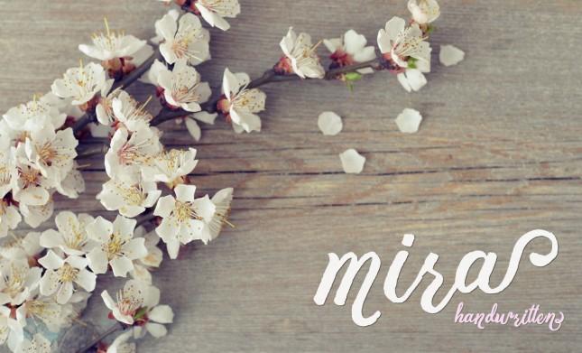 Mira Handwritten Font and Graphics Pack
