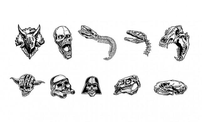 Steve Knerem's Skull Vector Pack