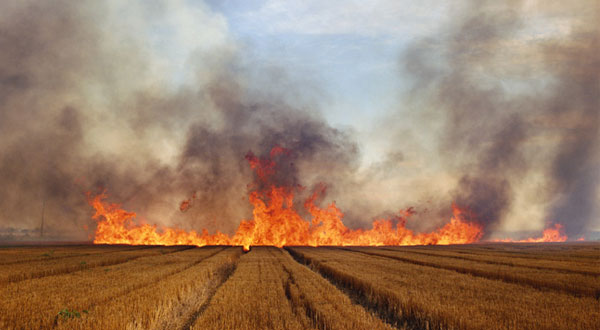 Larry Schwarm. Wheat Stubble Fire, Eastern Colorado, 1992, printed 2004. The Baltimore Museum of Art: Gift of Nancy and Tom O'Neil, Baltimore, BMA 2013.348