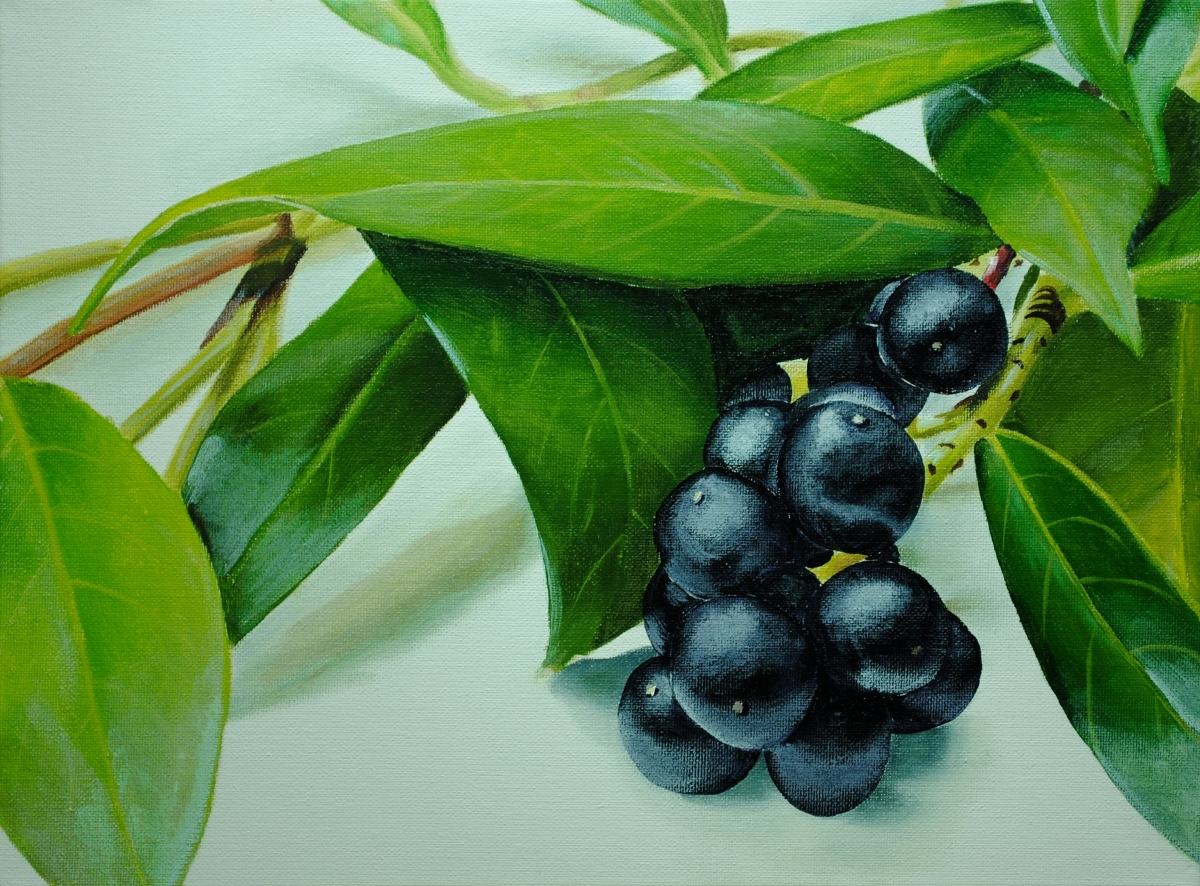 How to Paint Berries and Leaves