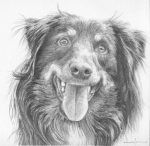 How to draw long hair dogs – 2 – Eyes