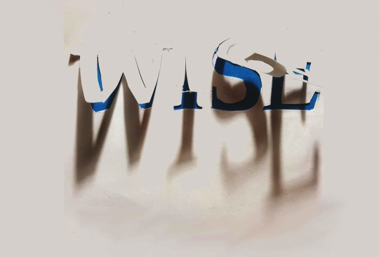 2019 WISE Show.  Buena Vista University