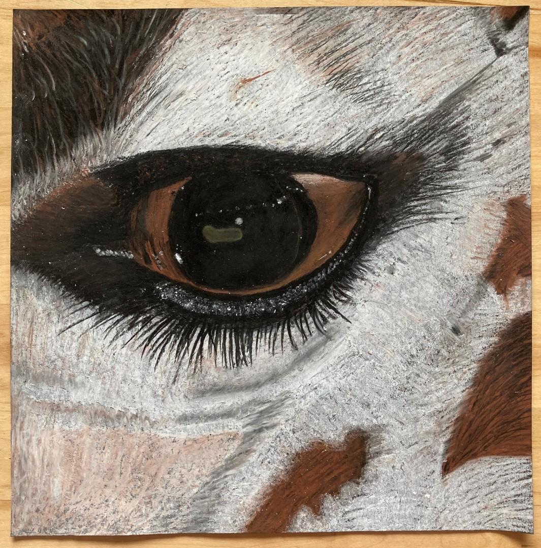 Eye of Inspiration