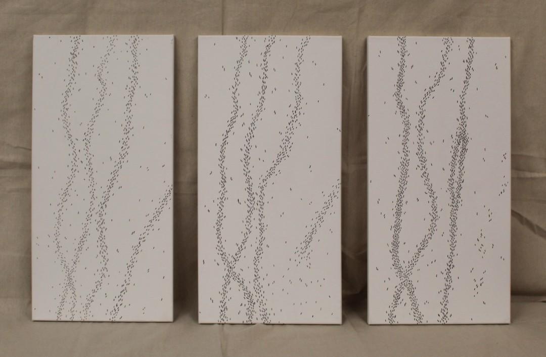 Colony triptych