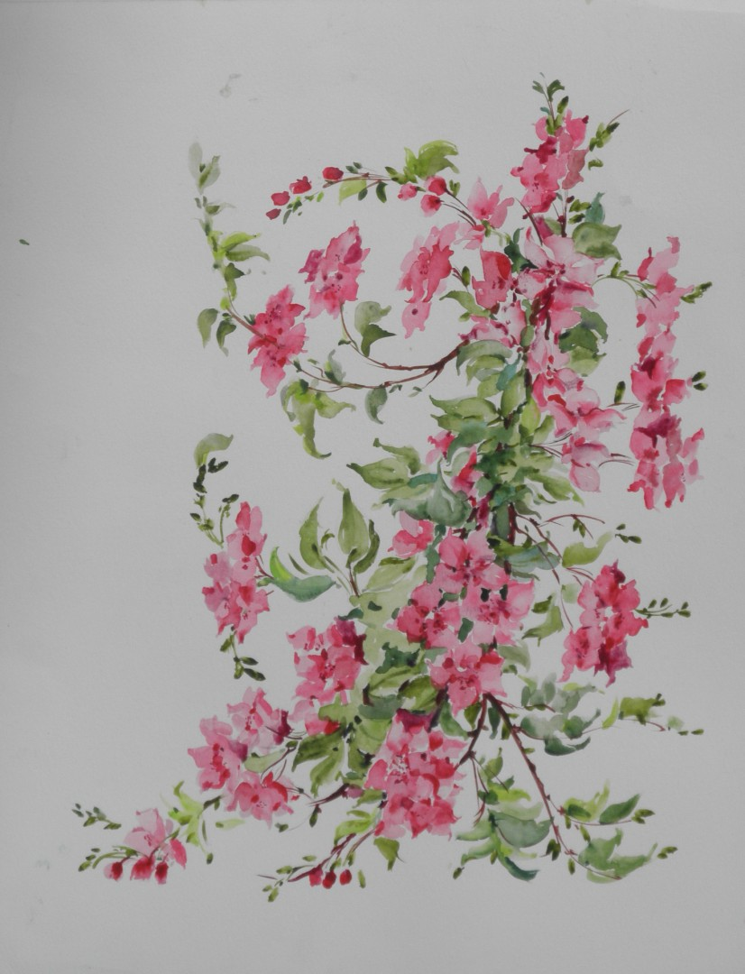 Wild apple tree branch , Fine Art