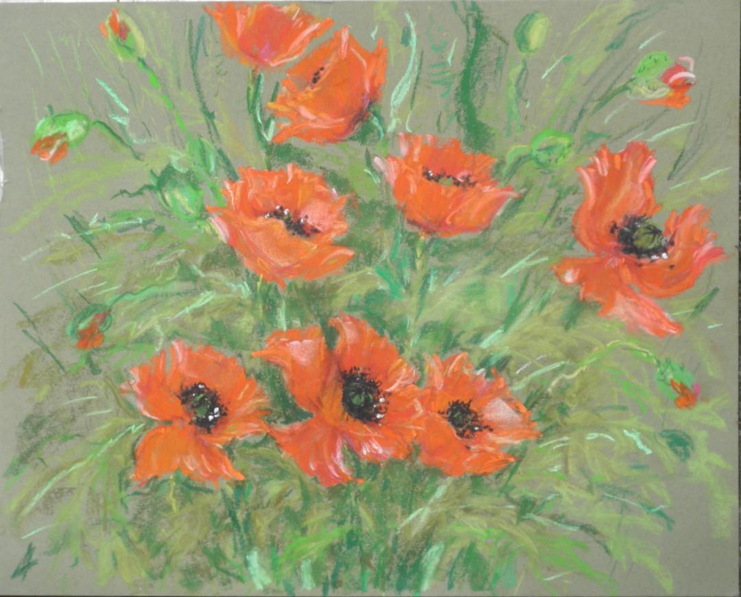 Poppies, Fine Art