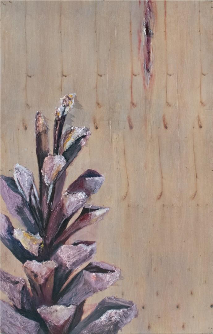 Pinecone #9
