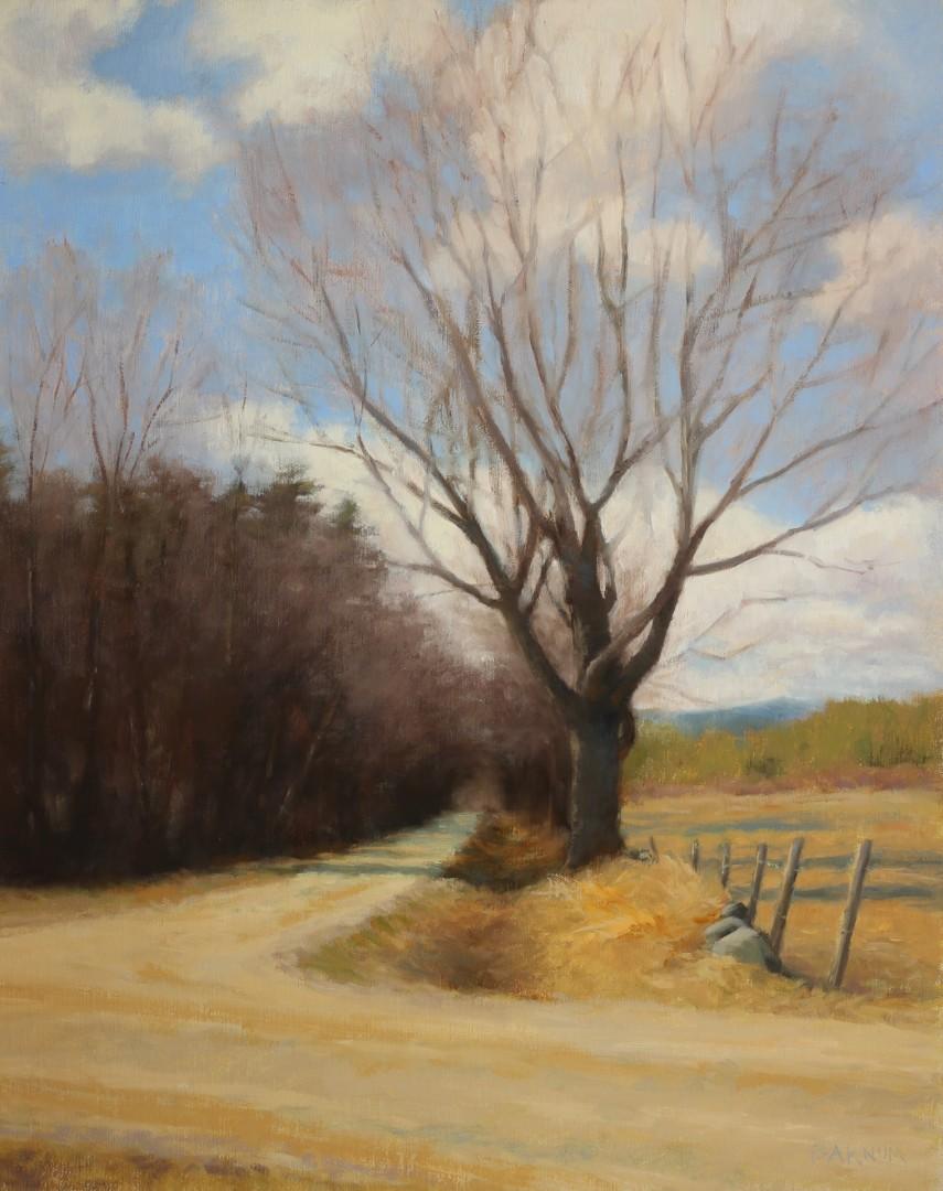 Bodge Hill Road, April, Fine Art