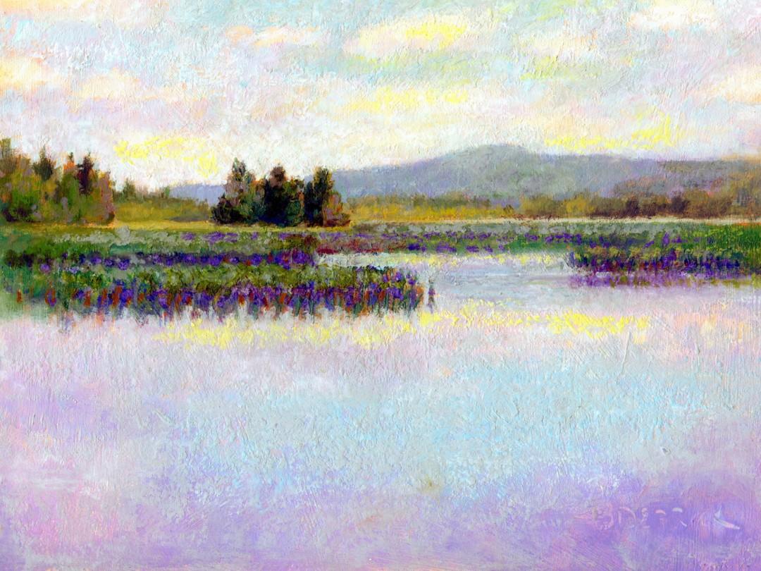 McDaniels Marsh I