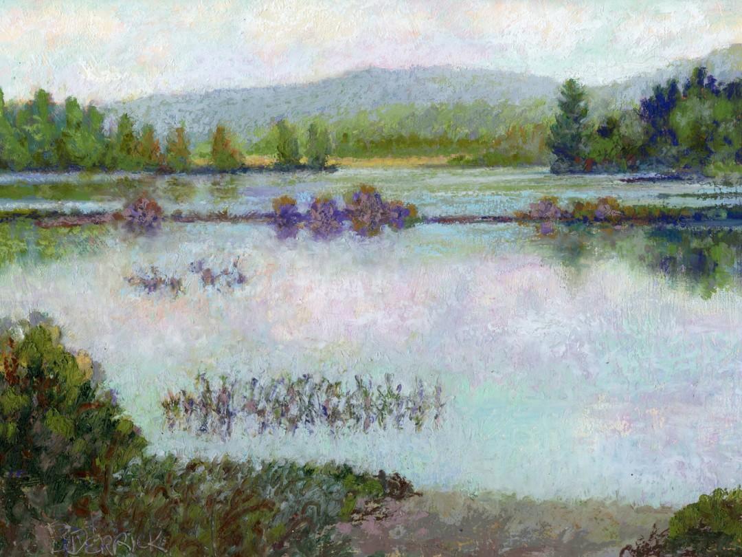 McDaniels Marsh II