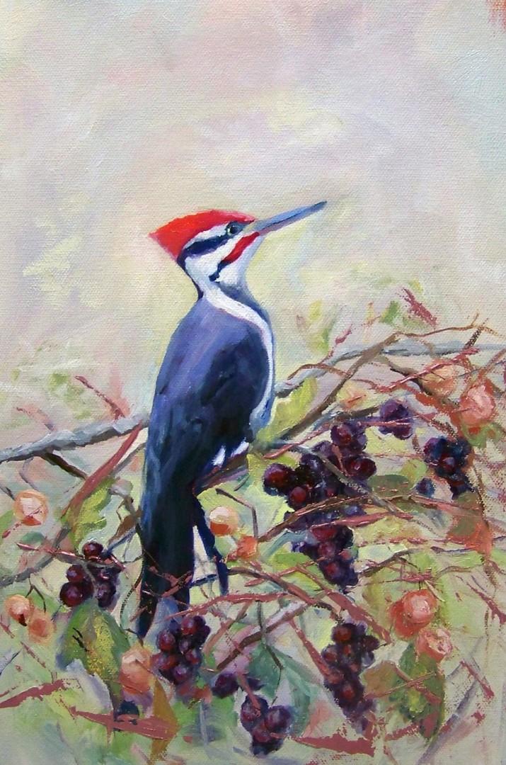 """Got Grapes"" - Pileated Woodpecker"