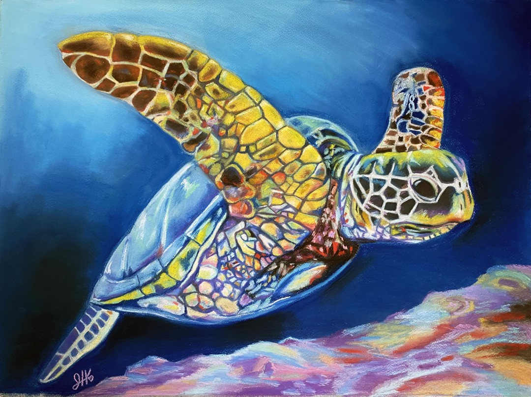 Happy Sea Turtle