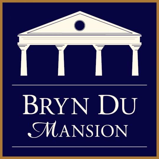 15th Annual Bryn Du Art Show