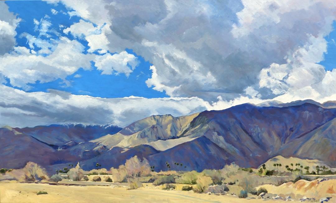Palm Springs Shadows