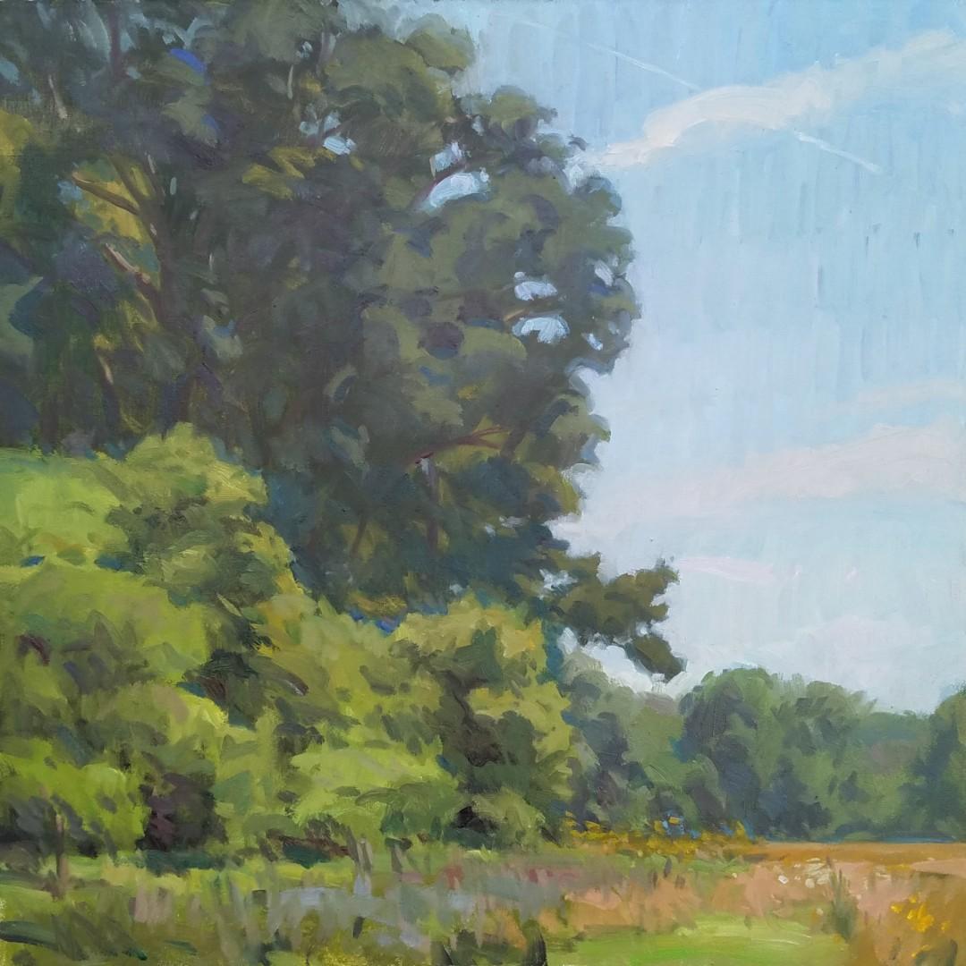 Slow Summer, Fallow Fields