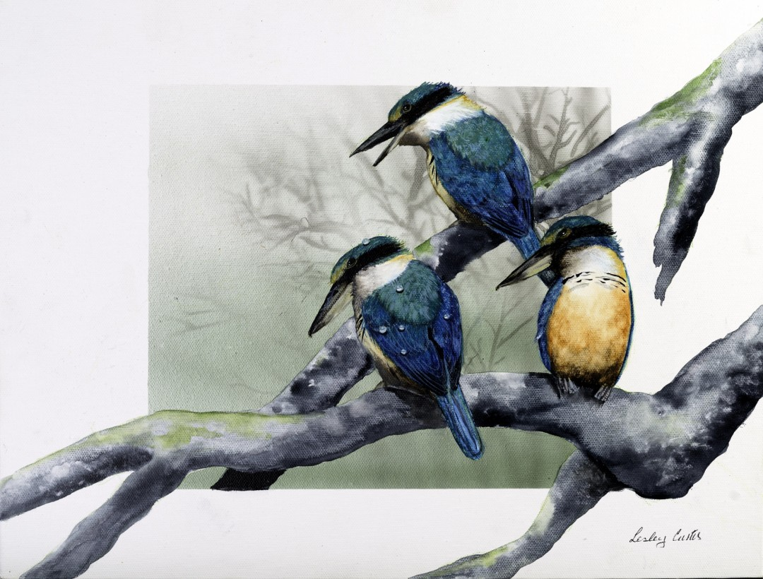 "Australian Kingfishers ""On Guard"""