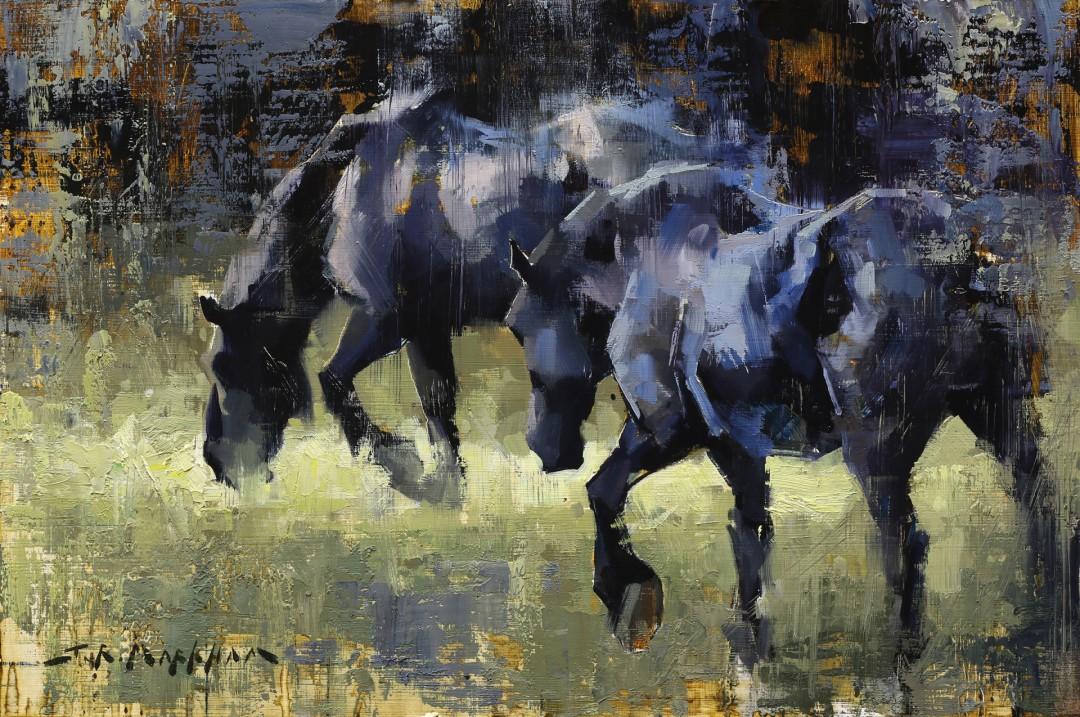 Ebony Equine