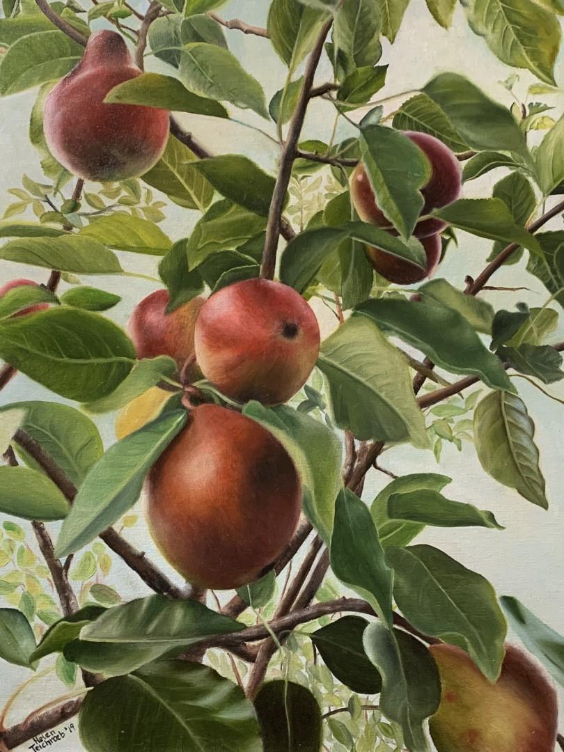 Pear Heaven