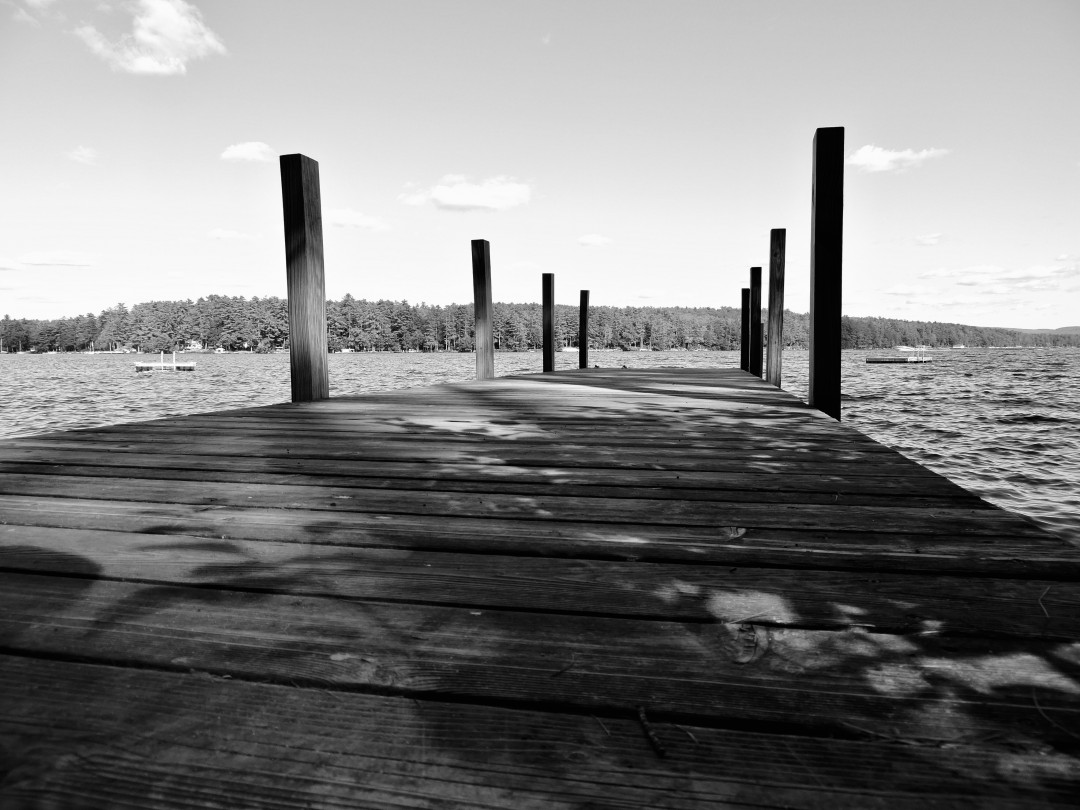The Dock's View