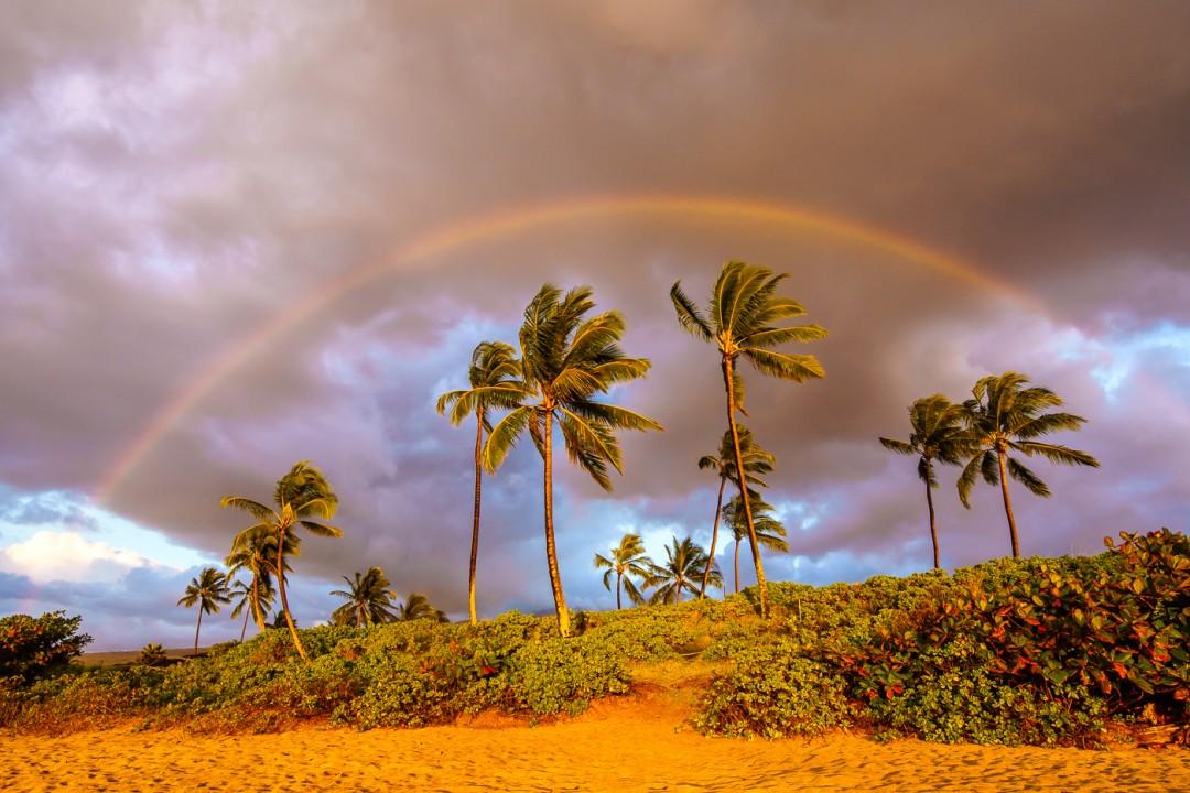 Maluaka Rainbow