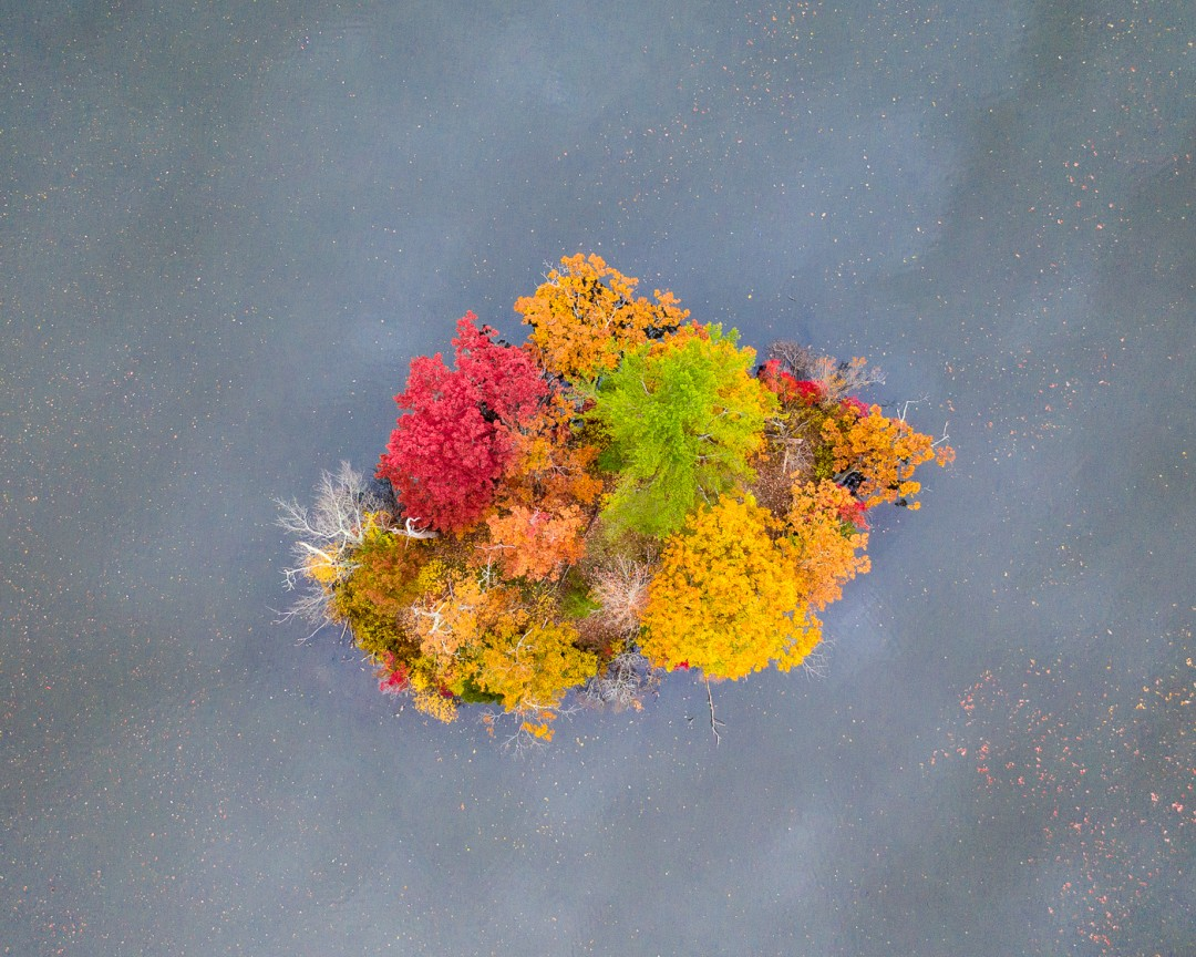 Island of Color