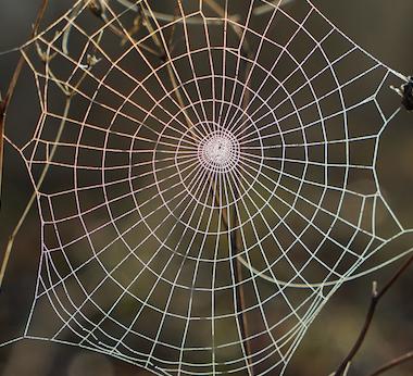 Transformation: Fiber as Medium | The Common Thread Gallery