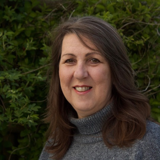 Marianne Donohoe user profile