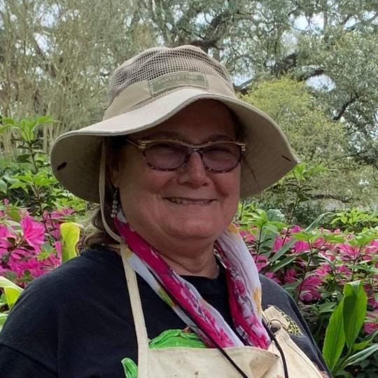 LAURA SAXON user profile