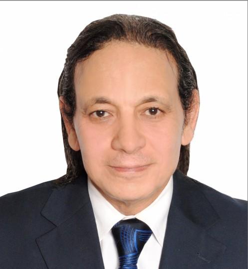 Mostafa Sadek user profile