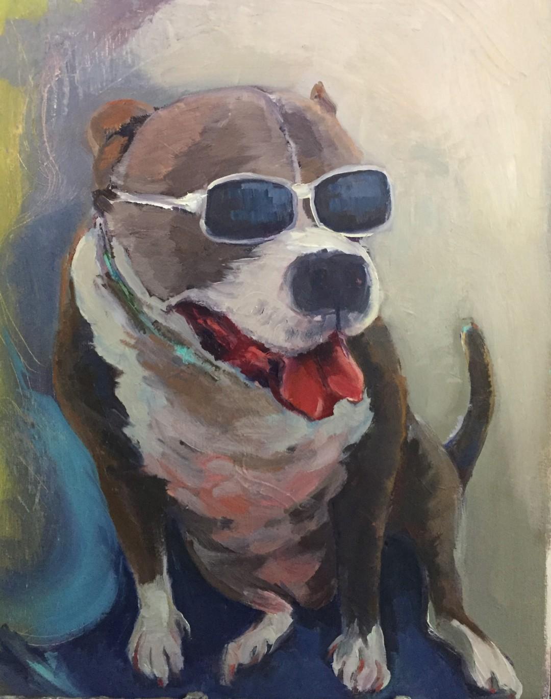 Key West cool pup