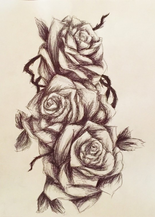 A Sketch of Roses