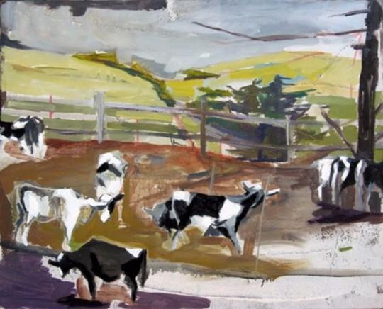 Sonoma Cows