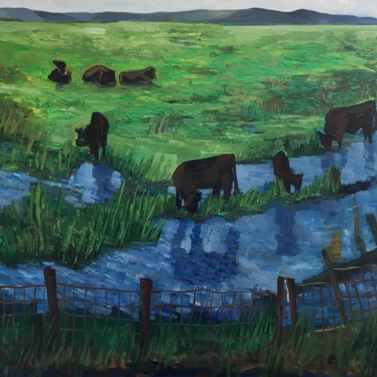 Reflecting Cows