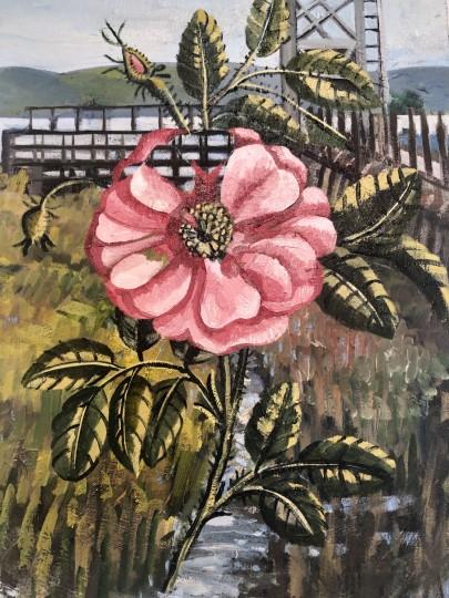 Brazos Rose