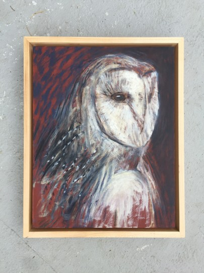 Barn Owl Selfportrait