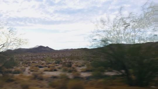 Desert Dreamscape